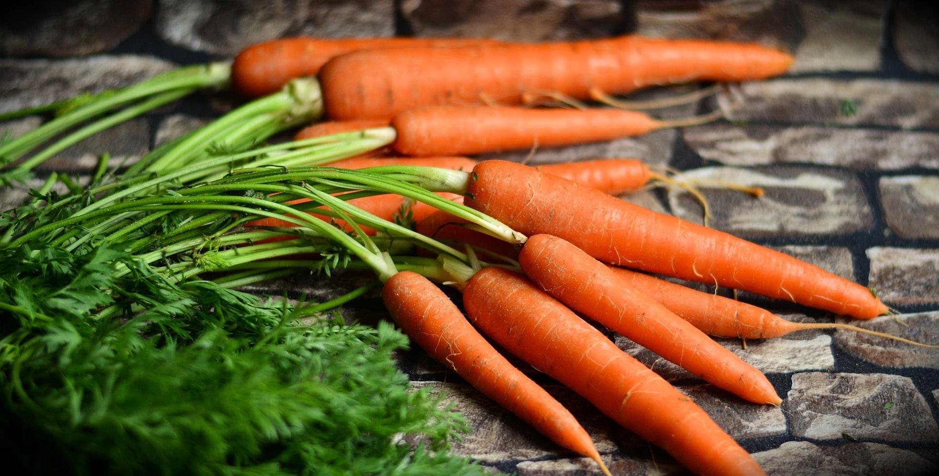 Foods good for dental health